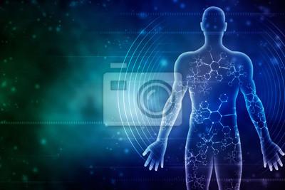 Fototapeta 2d ilustrace Mužské těleso svalů
