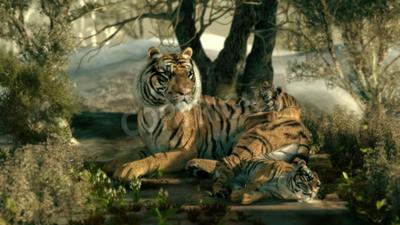 Fototapeta 3D počítačová grafika Tiger matka se dvěma dětmi