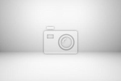 Fototapeta Abstract gray empty room wall background