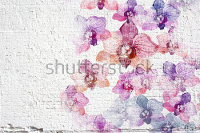 Fototapeta Abstraktní bílé grunge zeď štukatura pozadí. Stuhová štuková struktura s barevnými akvarelovými orchideji.