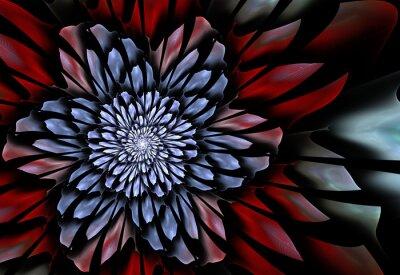 Fototapeta Abstraktní fraktální květina