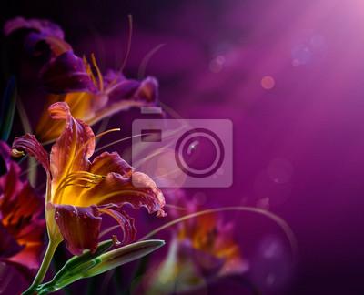 abstraktní květinové background.With copy-space