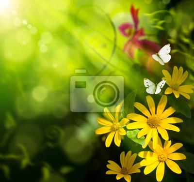 Abstraktní umění léto pozadí. Květ a motýl