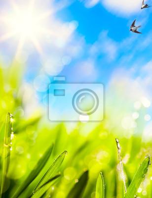 abstrakty z přírodního jaře pozadí
