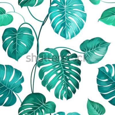 Fototapeta Aktuální palmové listy přes bílý, bezešvé vzor. Vektorové ilustrace.