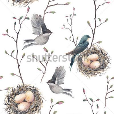 Fototapeta Akvarel bezešvé vzor s hnízdo, ptáky a větvičky stromů. Vektorové ručně tažené jarní pozadí. Vintage tapety s vlaštovka a vejce
