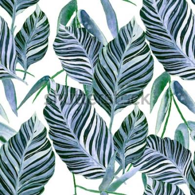 Fototapeta Akvarel bezešvé vzor s tropickými listy: palmy, monstera, mučenka. Krásný celoplošný tisk s ručně tažené exotické rostliny. Botanický design plavek.