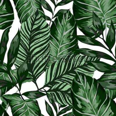 Fototapeta Akvarel bezešvé vzor s tropickými listy: palmy, monstera, mučenka. Krásný celoplošný tisk s ručně tažené exotické rostliny. Botanický design plavek. Vektor.