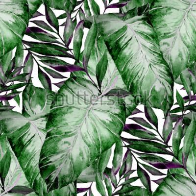 Fototapeta Akvarel bezproblémový vzorek s tropickými listy: palmy, monstera, vášnivé ovoce. Krásné celoplošné tisky s ručně kreslenými exotickými rostlinami. Plavba botanického designu.