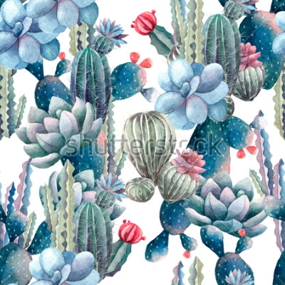Fototapeta akvarel kaktus vzor