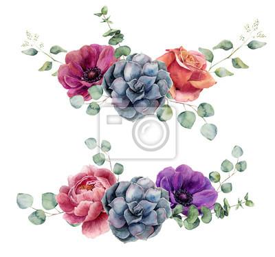 c780311e8b3 Fototapeta Akvarel květinové prvky na bílém pozadí. Vintage styl kytička  set s eukalyptem větvemi