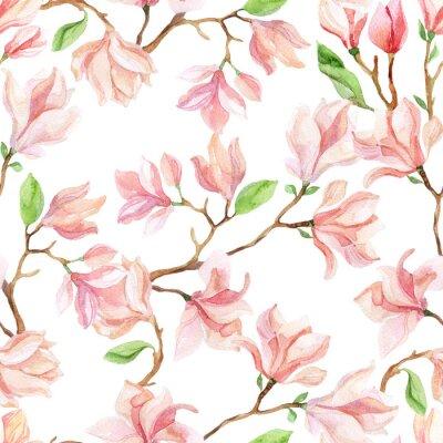 Fototapeta akvarel Magnolia pobočky