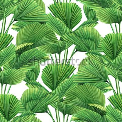 Fototapeta Akvarel malování kokos, palmový list, zelené listy vzor bezešvé pozadí. Akvarel ručně kreslenou ilustrace tropických exotických listů tiskne na tapety, textilní vzor Hawaii aloha džungle.
