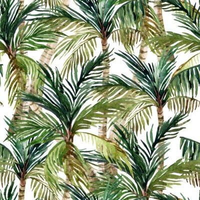 Fototapeta Akvarel palma bezešvé vzor