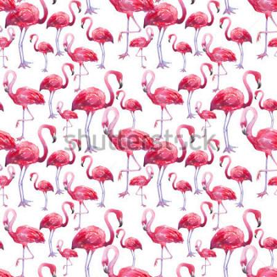 Fototapeta akvarel pták exotické plameňák