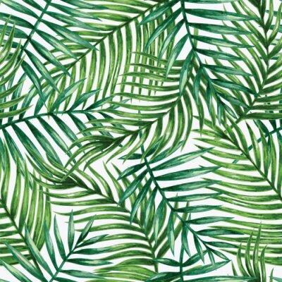 Fototapeta Akvarel Tropické palmové listy bezproblémové vzor. Vektorové ilustrace.