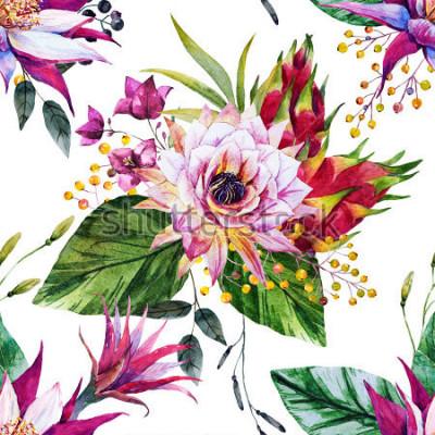 Fototapeta akvarel tropický vzorek, kaktus květ, Mexiko, drak ovoce, žluté bobule