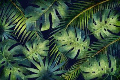 Fototapeta Akvarel vektorový banner tropických listů a větví izolovaných na tmavém pozadí.
