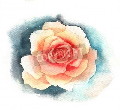 Fototapeta Akvarel vzrostl