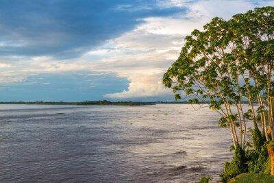 Fototapeta Amazon Riverview