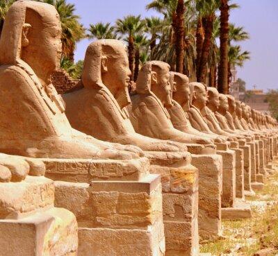 Fototapeta Amun Temple of Luxor