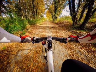Fototapeta andando v bicicletta v Autunno v Campagna. POV originalmpoin pohledu