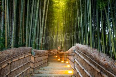 Fototapeta Arashiyama Bamboo Forest v Kyoto Japonsko