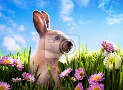 art dítě velikonoční zajíček na jarní zelené trávě
