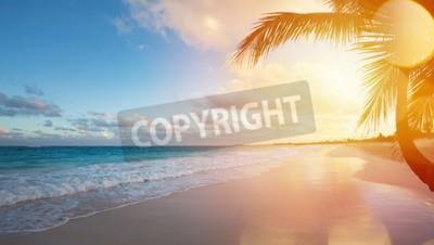 Fototapeta Art Krásný východ slunce nad tropickou pláž