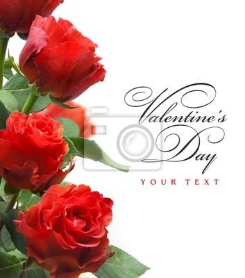 art přání s červenou růží na bílém pozadí