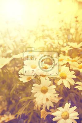 art vintage květiny na pozadí