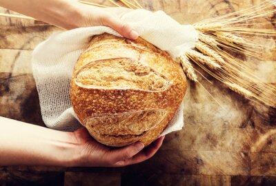 Fototapeta Baker drží bochník chleba na rustikální bacgkround