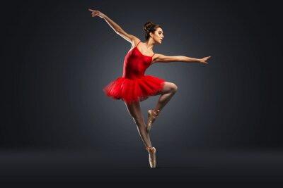 Fototapeta Ballet Dancer