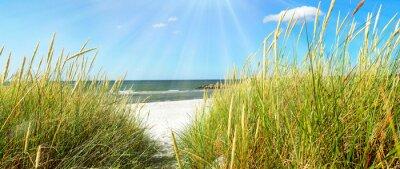 Fototapeta Baltské moře - duny a moře