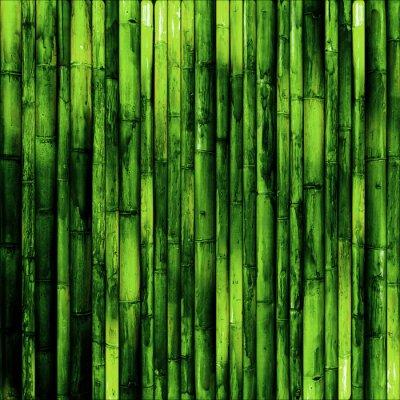 Fototapeta Bamboo zeď