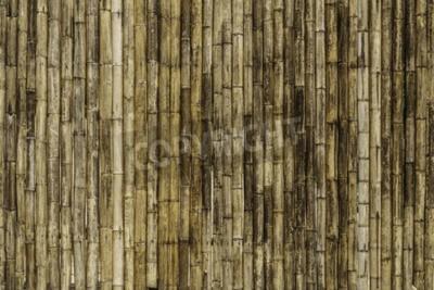Fototapeta Bambusového plotu pozadí