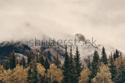 Fototapeta Banff národní park mlhave hory a lesy v Kanadě.
