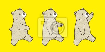 Bear Vektor Polarni Medved Plemeno Chuze Ilustrace Kresleny Znak