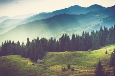 Fototapeta Beautiful summer mountain landscape.