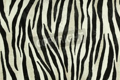 Fototapeta Bezešvé barevné textury tygr