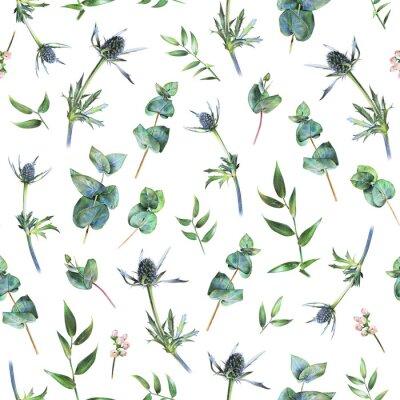 Fototapeta Bezešvé květinové vzorek se zeleným eukalyptem, horečnatými listy a listy ruskusu na bílém. Jarní rostliny. Květinové přírodní pozadí tažené ručně s barevnou tužkou