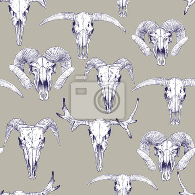 Bezesve Vzor S Lebkami Jelen Byk Kozy A Ovce Kresba Lebek