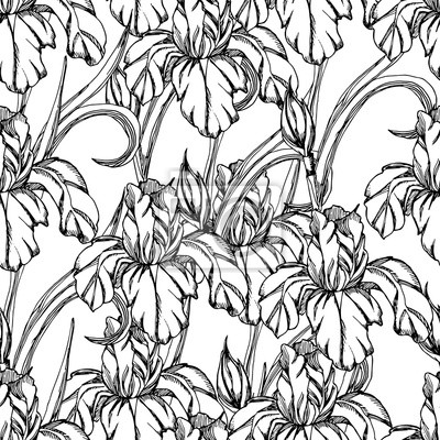 Bezproblemova Pattern Vector Dekorativni Duhovky Kvetin Fototapeta