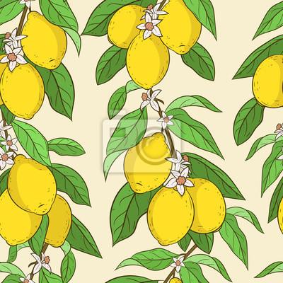 Bezproblemove Vzorek S Citrony Roztomily Vektor Zazemi Kresleny