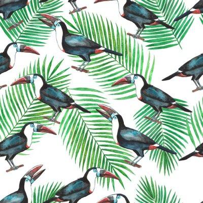 Fototapeta Bezproblémový vzor tropických toukanů a palmových listů