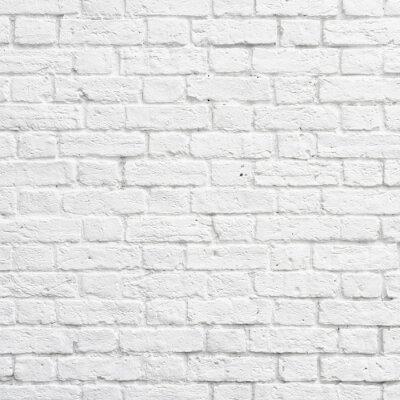 Fototapeta Bílá cihlová zeď