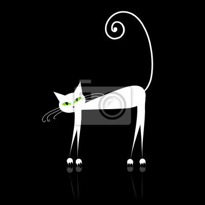 kočička černá mokrá