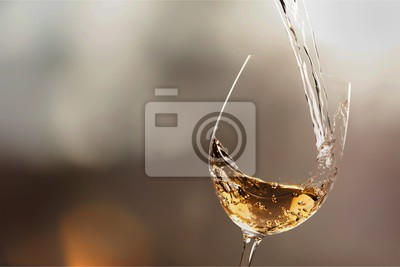 Fototapeta Bílé víno splash izolované na pozadí