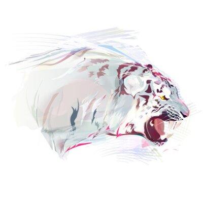 Fototapeta Bílý tygr, Akvarel Ilustrace