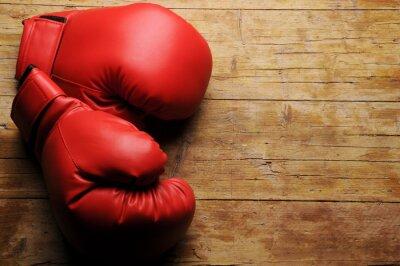Fototapeta Boxerské rukavice ¿En serio?